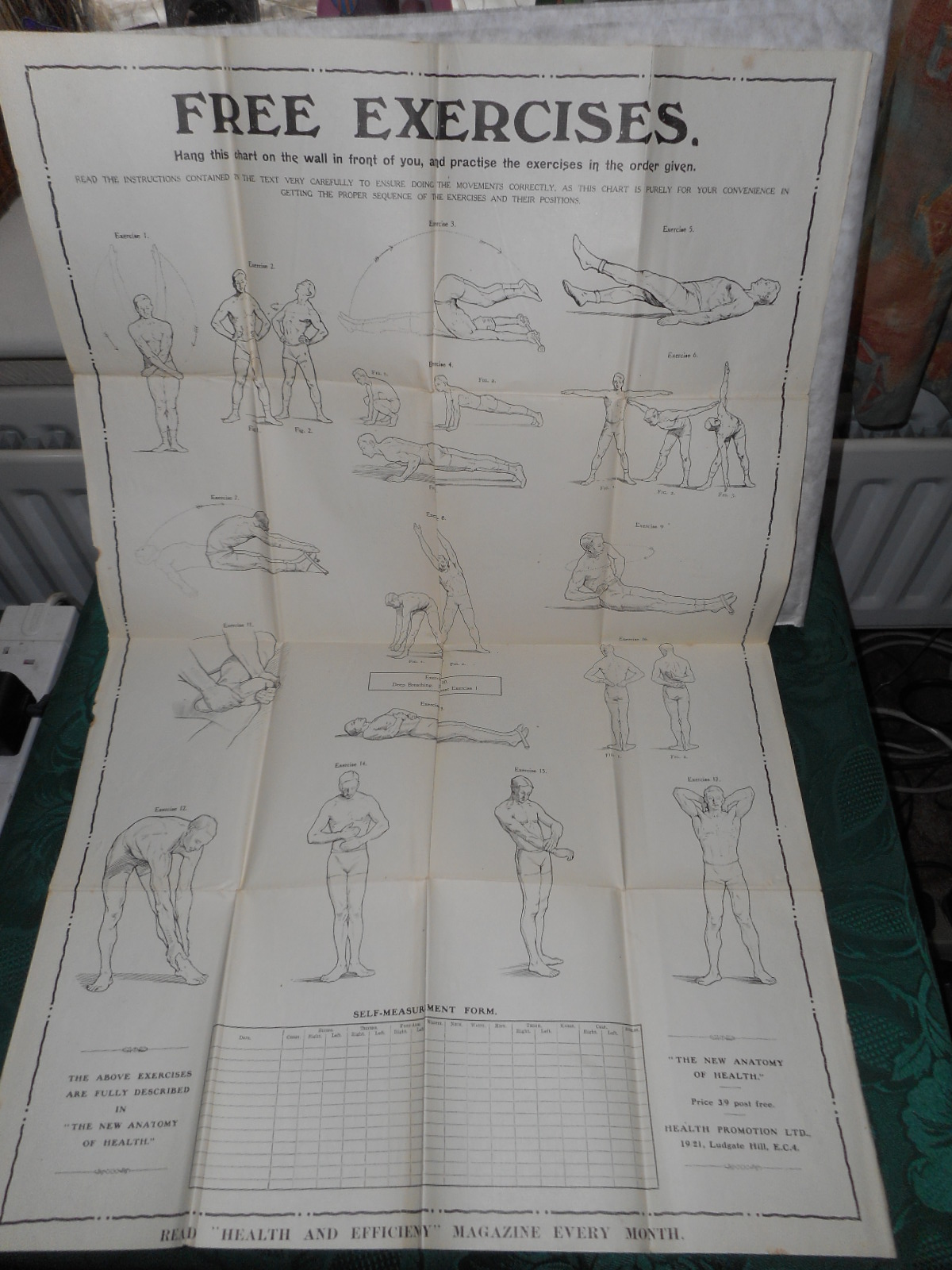 Image for The New Anatomy of Health (Complete with the 2 Large Folding Charts)