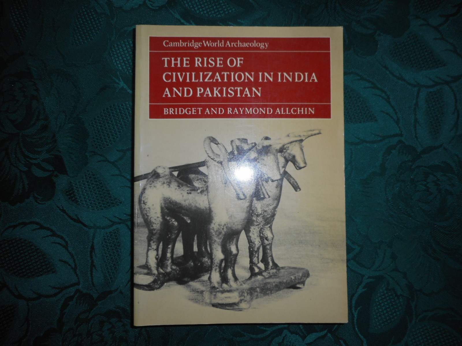 Image for The Rise of Civilisation in India & Pakistan