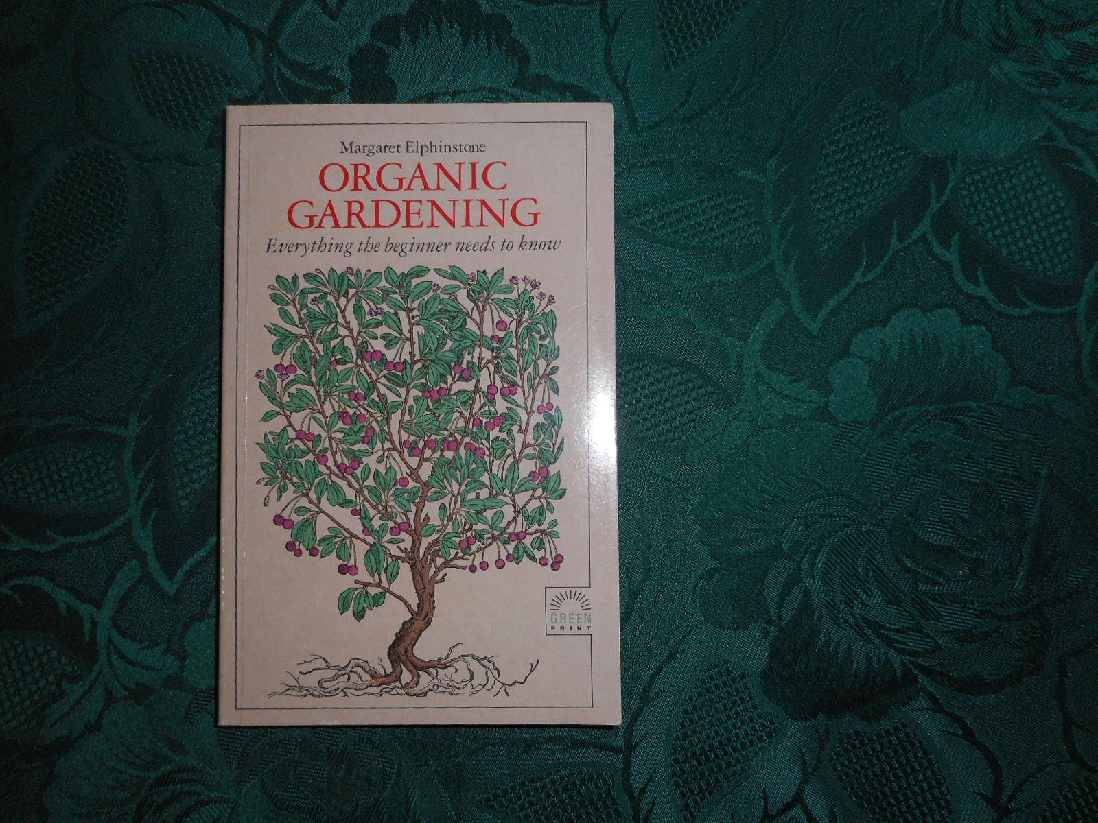 Image for Organic Gardening.  Everything the Beginner Needs to Know
