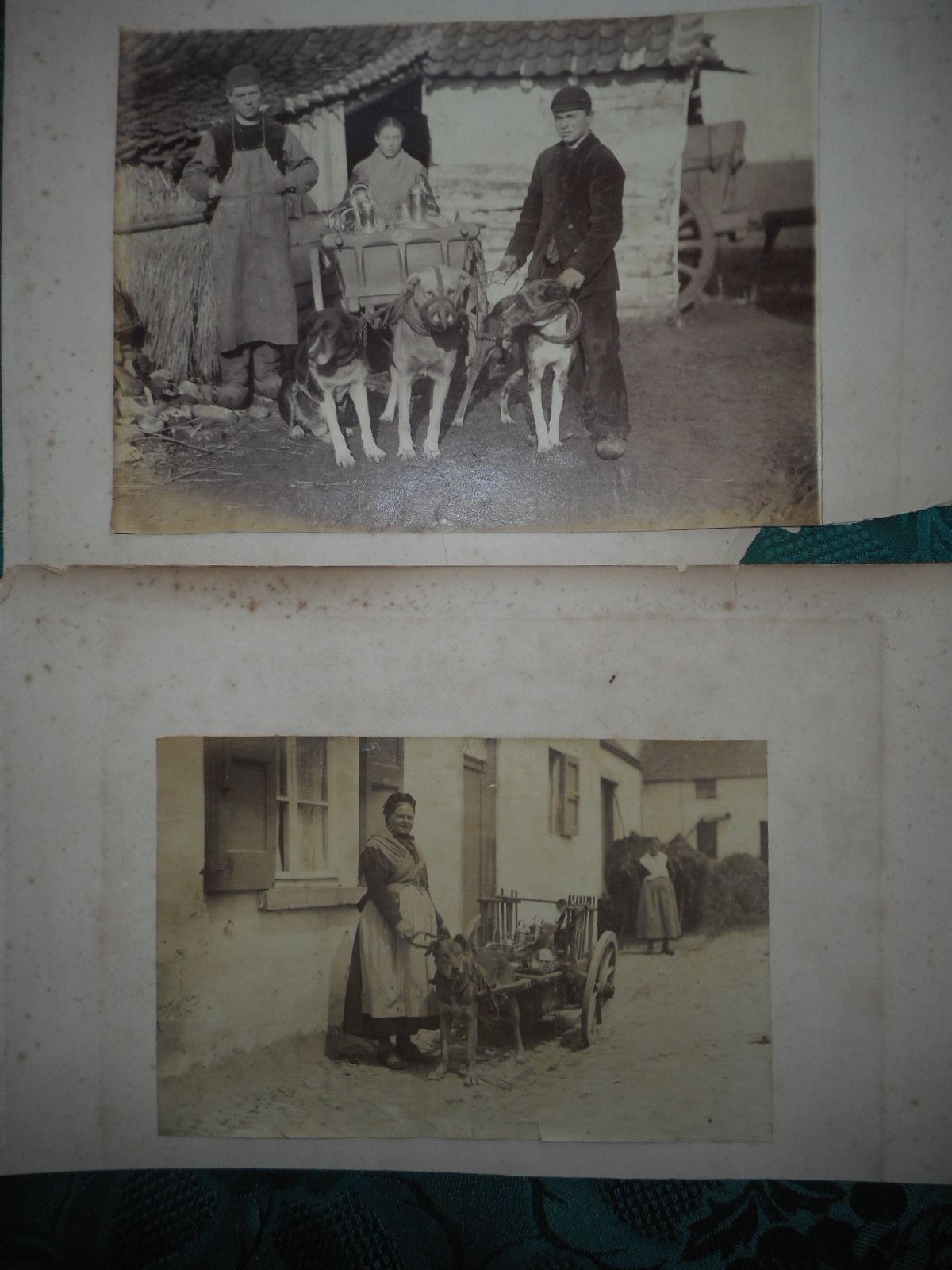 Image for TWO Antique Photographs c. 1890s of People with Dog Carts (Dogcarts) . Milk Delivery Dog Carts