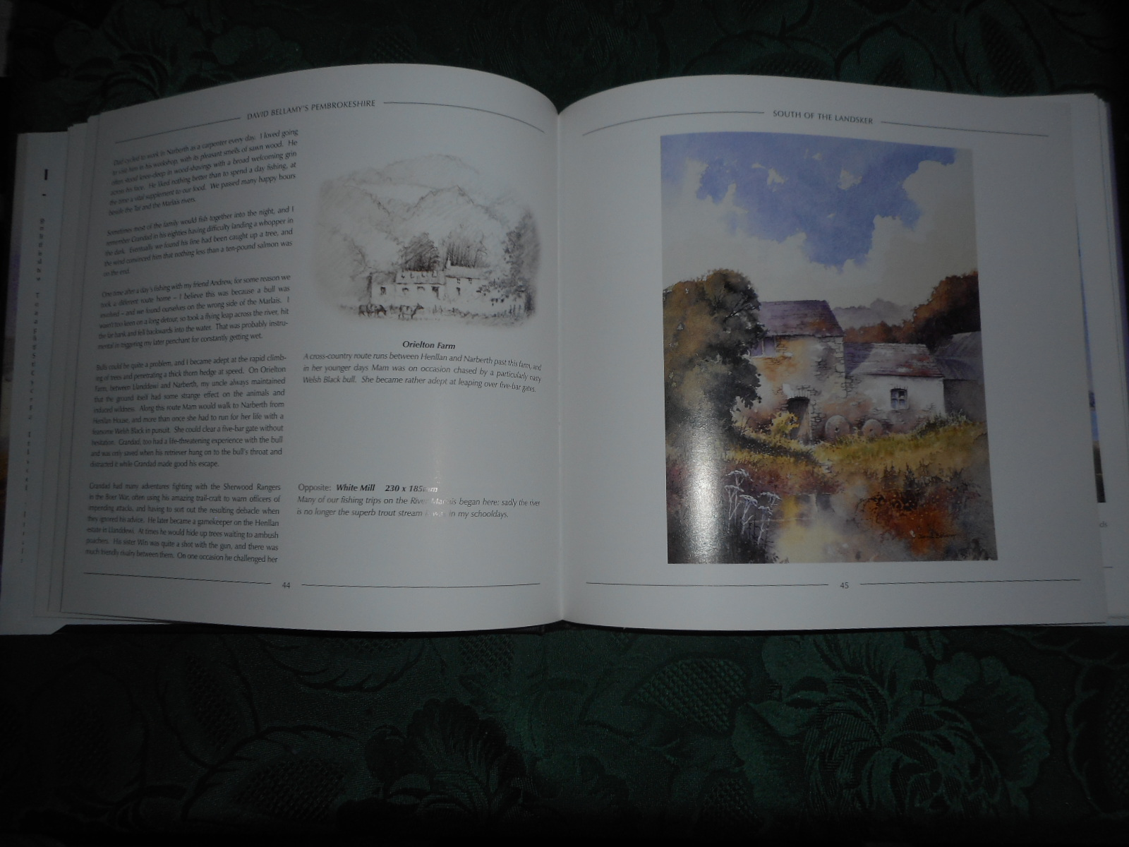 Image for David Bellamy's Pembrokeshire (SIGNED Copy)