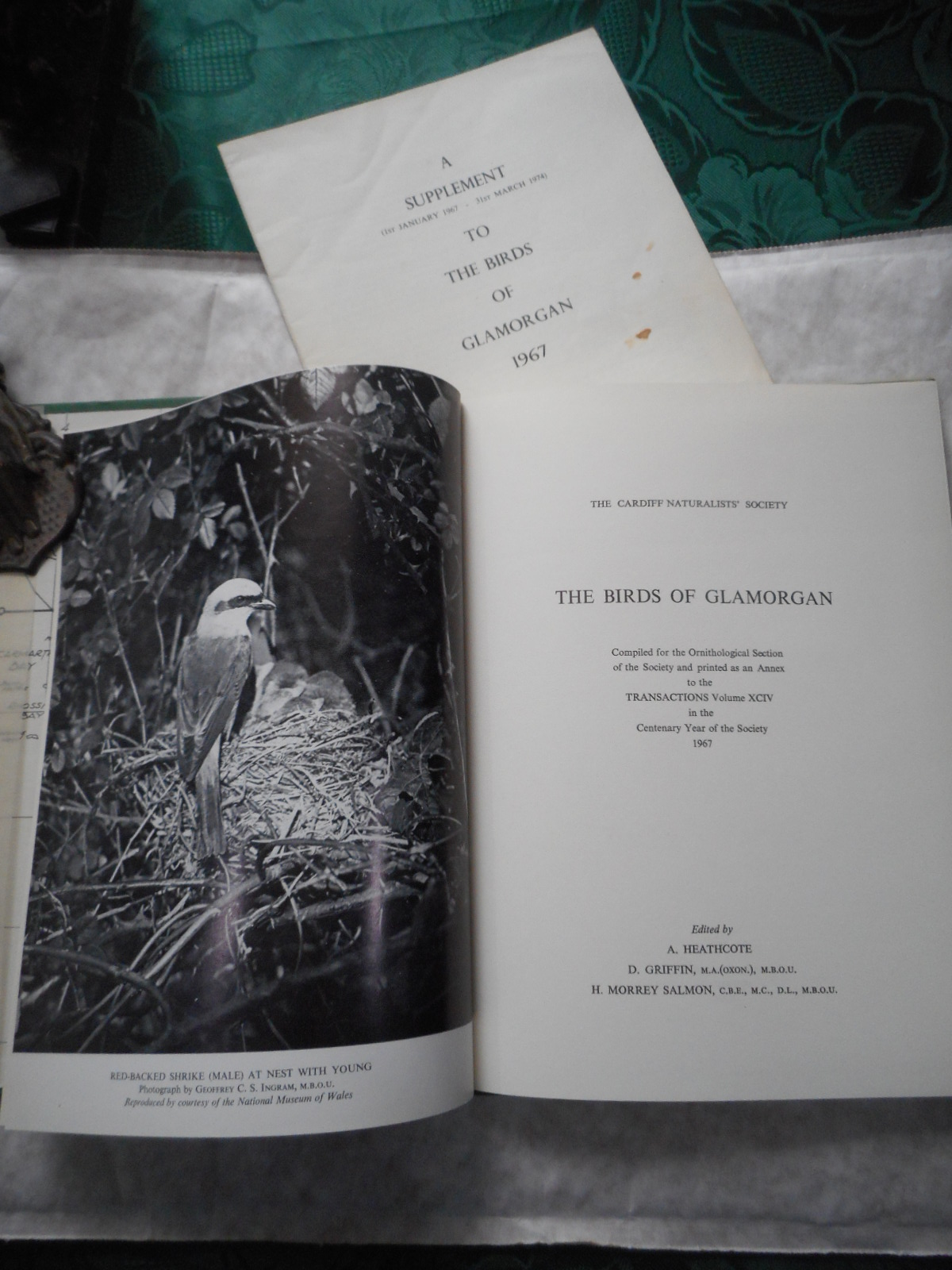 Image for The Birds of Glamorgan. Compiled for the Ornithological Section of the Society and Printed As an Annex to the Transaction Volume XCIV on the Centenary Year of the Society 1967. Plus a Supplement - 1st January 1967 - 31st March 1974.