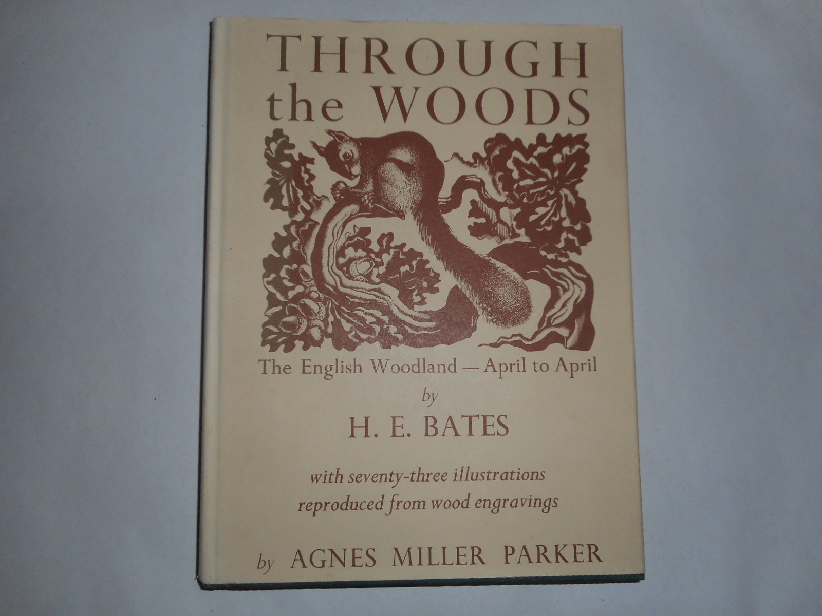 Image for Through The Woods: The English Woodland - April To April