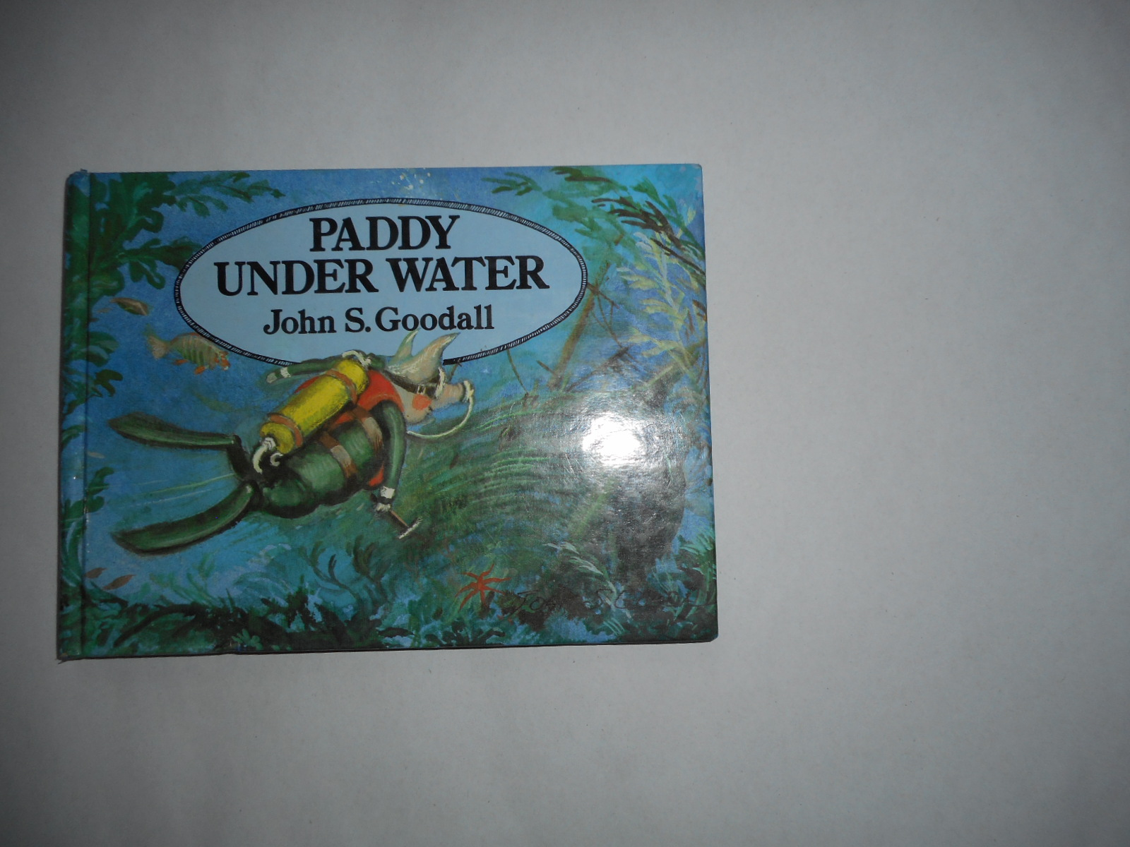 Image for Paddy under the Water