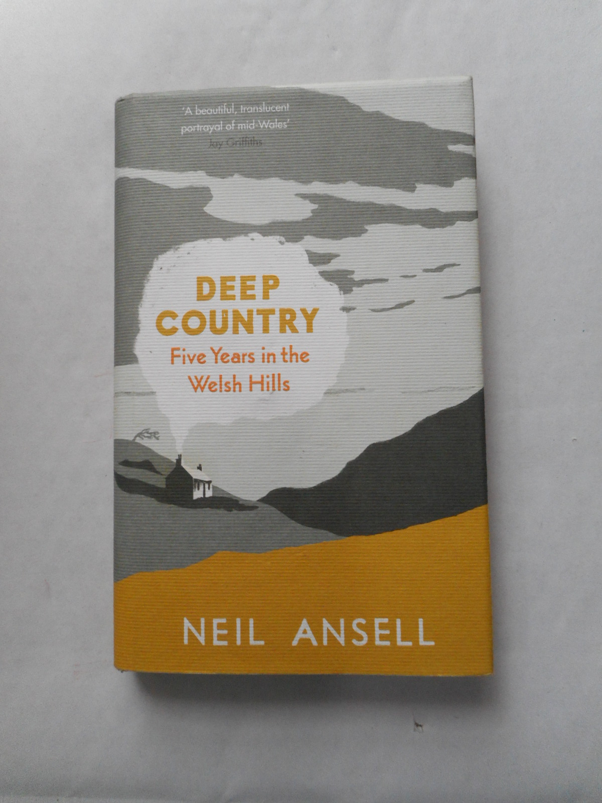 Image for Deep Country Five Years in the Welsh Hills