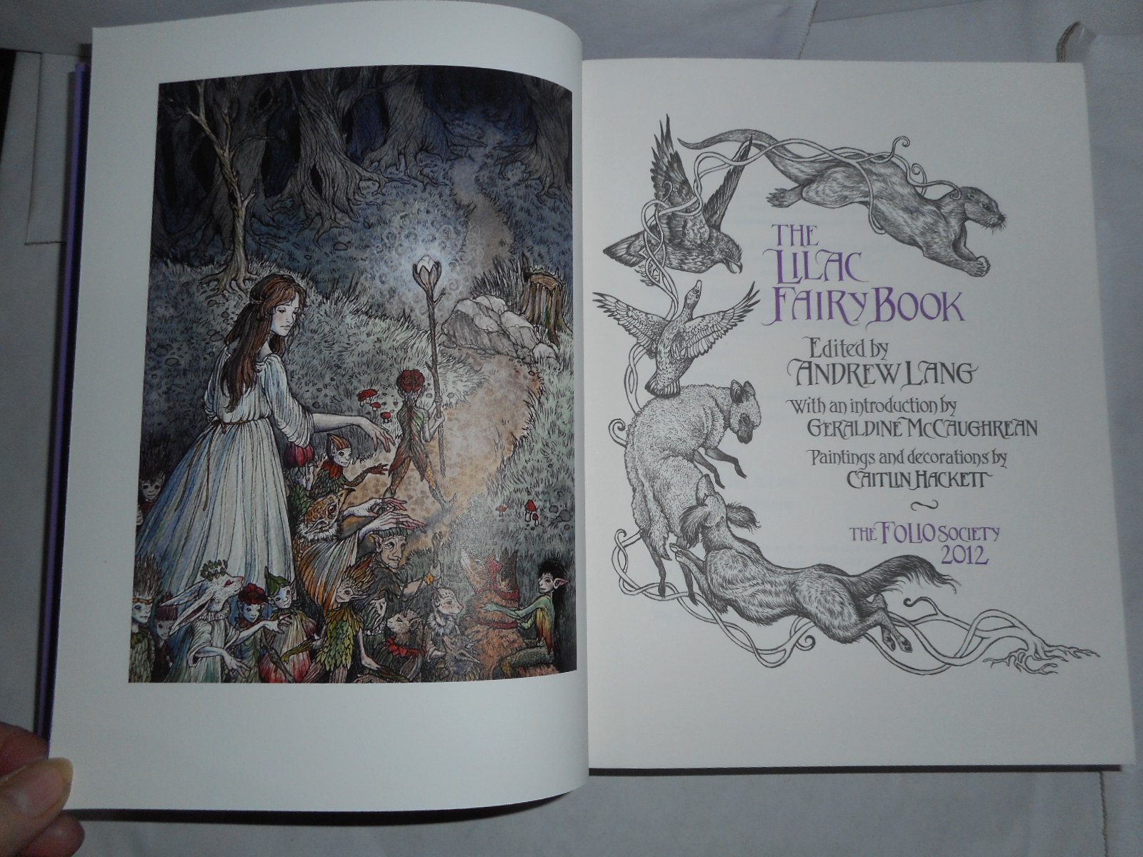 Image for The LILAC Fairy Book.