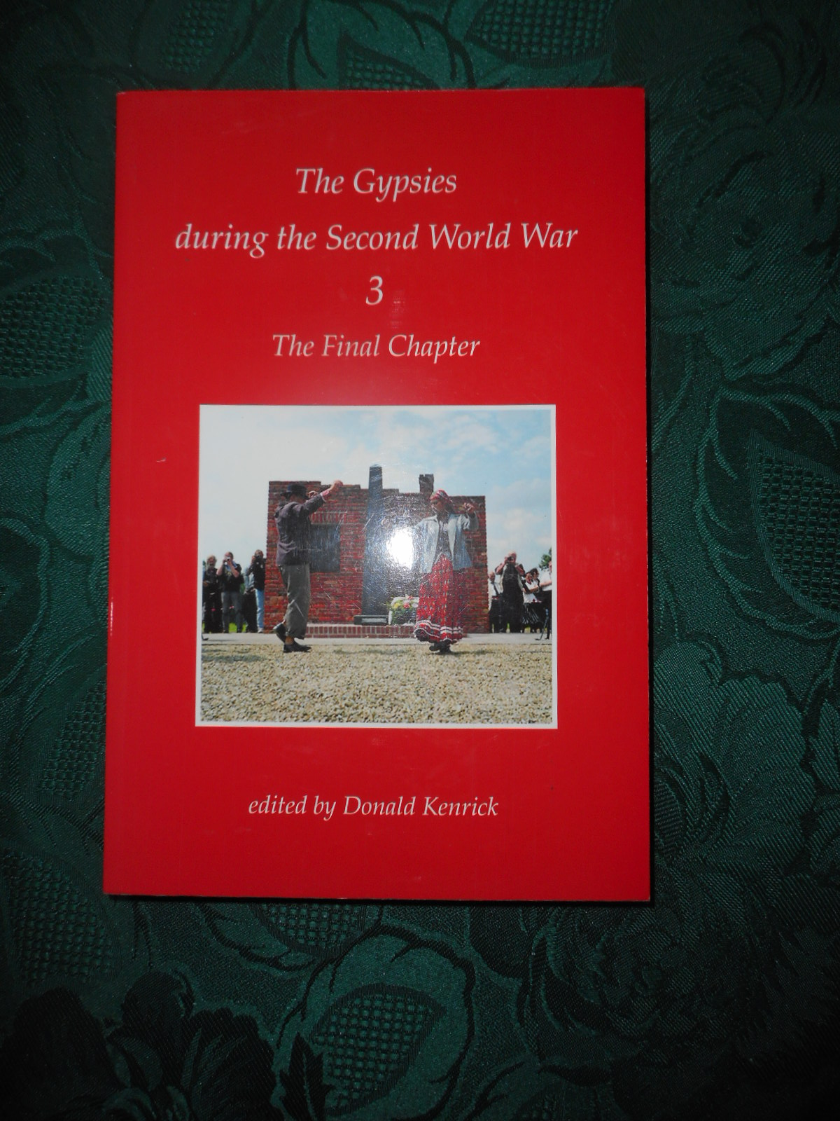 Image for The Gypsies During the Second World War : The Final Chapter Volume 3