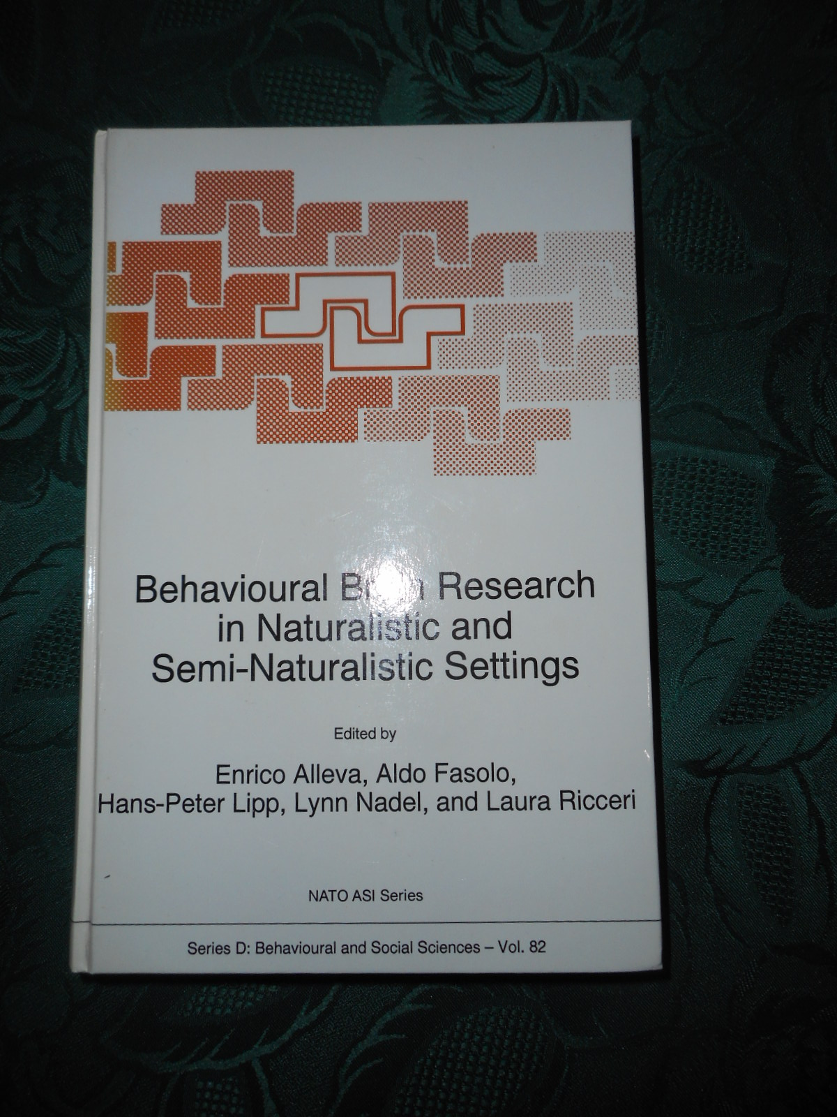 Image for Behavioural Brain Research in Naturalistic and Semi-Naturalistic Settings. Series D: Behavioural and Social Sciences - Vol. 82