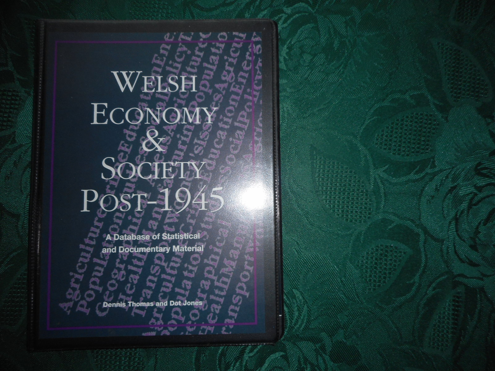 Image for Welsh Economy and Society Post -1945 Disk and Manual Package