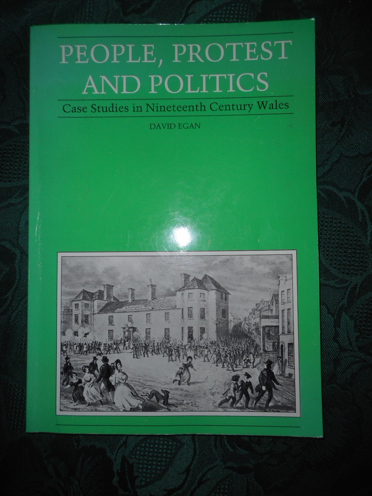 Image for People, Protest & Politics: Case Studies in Nineteenth Century Wales.